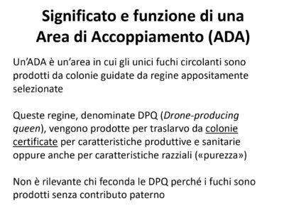 Materiale informativo per l'utilizzo delle ADA