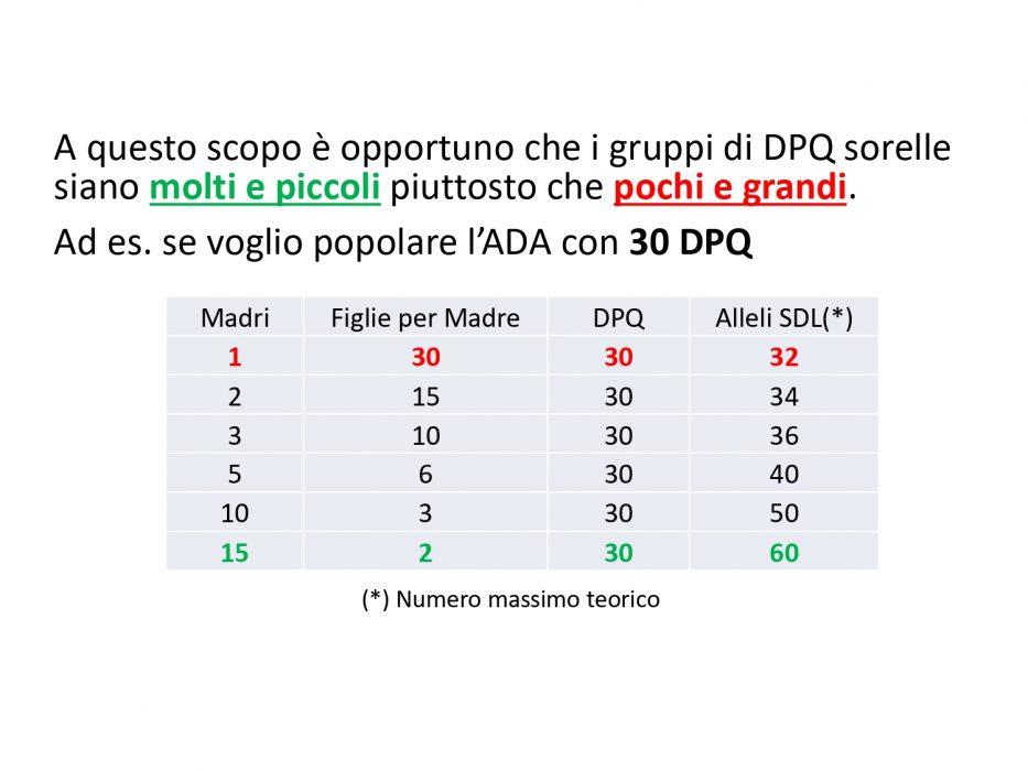 ADA_Pagnacco_page-0005