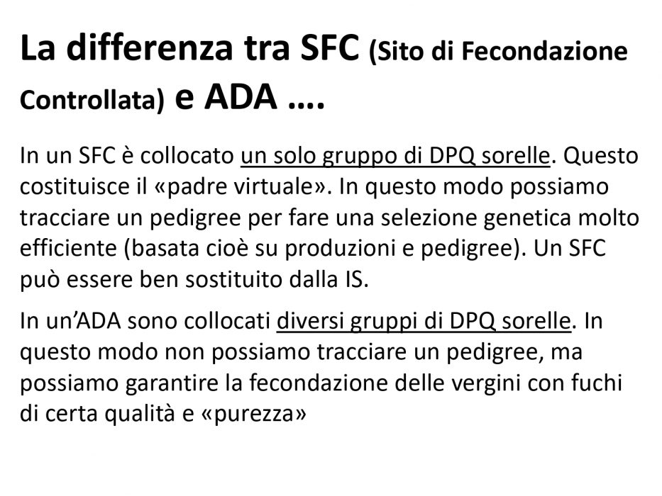 ADA_Pagnacco_page-0006